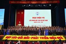 Thủ tướng Nguyễn Xuân Phúc: Phát triển kinh tế tập thể phải xuất phát từ nhu cầu thực sự của nhân dân