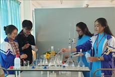 Học sinh tận dụng phế thải tạo chế phẩm hữu cơ thân thiện với môi trường