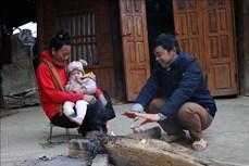 Điện Biên: Nền nhiệt giảm sâu, người dân vùng cao chống chọi với rét đậm, rét hại