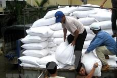 Khẩn trương xuất cấp gạo hỗ trợ người dân dịp Tết Nguyên đán Tân Sửu