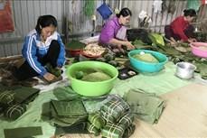 Làng Đại An Khê gìn giữ nghề làm bánh chưng, bánh tét truyền thống