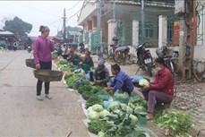 Giá các loại rau, củ giảm mạnh tại Cao Bằng