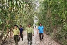 An Giang có gần 7.300 ha rừng dễ xảy ra cháy trong mùa khô hạn