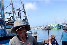 Ngư dân Quảng Ngãi trúng đậm cá cờ đầu năm mới