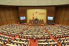 Đại biểu Quốc hội là người đại diện cho ý chí, nguyện vọng của Nhân dân