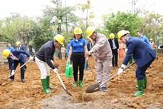 Công ty Điện lực Lai Châu phát động Tết trồng cây