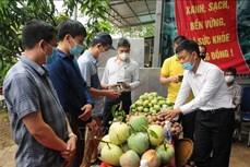 Sơn La có kế hoạch chi tiết tiêu thụ nông sản theo từng kịch bản của dịch COVID-19