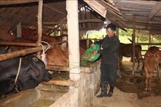 Động lực thoát nghèo của người dân miền biên giới Hương Khê