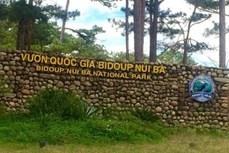 Thành lập Ban Quản lý rừng bền vững và bảo tồn đa dạng sinh học Vườn Quốc gia Bidoup - Núi Bà