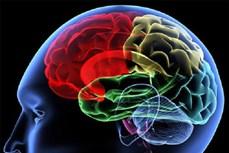 Phát hiện tổn thương não ở bệnh nhân tử vong do COVID-19