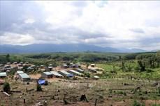 Kon Tum: Nhiều hộ dân ngang nhiên xâm lấn đất rừng