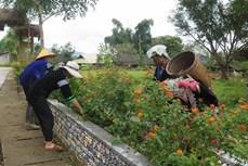 Nhiều cách làm sáng tạo của phụ nữ vùng cao Lai Châu trong xây dựng nông thôn mới
