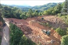 Vụ khai thác trái phép rừng phòng hộ trên đèo Pha Đin: Tạm đình chỉ thêm Chủ tịch UBND xã Tỏa Tình