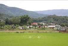 Điện Biên chấn chỉnh tình trạng chiếm dụng đất, xây mộ giả tại Nghĩa trang trung tâm Noong Hẹt