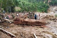 Bảo đảm an toàn cho người dân vùng miền núi Quảng Nam trong mùa mưa lũ