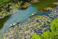 Phát triển du lịch sức khỏe, tăng trải nghiệm cho du khách ở Việt Nam