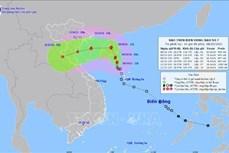 Hơn 4.600 trường hợp F0, F1 nằm trong phương án cách ly, sơ tán riêng khi ứng phó bão số 7