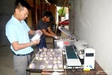 Để sản phẩm OCOP rộng đường vào siêu thị ở Nghệ An
