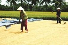 Bạc Liêu nỗ lực giảm nghèo bền vững, nâng cao chất lượng đời sống cho người dân