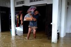Bão số 6 trên đất liền các tỉnh Quảng Nam, Quảng Ngãi suy yếu thành áp thấp nhiệt đới