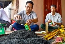 Chuyện làm OCOP ở xã nghèo thuộc diện 135 Bình Sơn