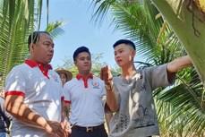 Anh Nguyễn Đức Thành - Thành công với nông nghiệp hữu cơ