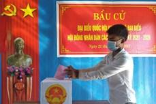 16 tỉnh, thành phố hoàn thành việc bầu cử sớm