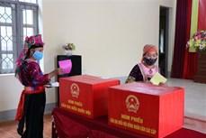 Trên 365.000 cử tri Điện Biên phấn khởi đi bỏ phiếu