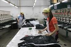 Thành phố Hồ Chí Minh: Nỗ lực tìm việc làm cho người lao động trong mùa dịch COVID-19