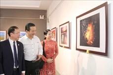 Triển lãm Ảnh nghệ thuật Việt Nam năm 2020