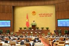 Kỳ họp thứ 10, Quốc hội khoá XIV: Quốc hội thông qua Nghị quyết về tổ chức chính quyền đô thị tại Thành phố Hồ Chí Minh