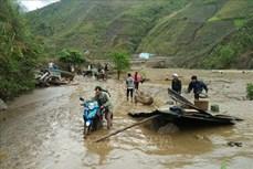 越共中央总书记、国家主席阮富仲呼吁全国同胞和战士齐心协力胜利落实防灾任务