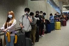 340名在美越南公民被安全接回国