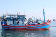 为渔民靠海谋生创造便利条件