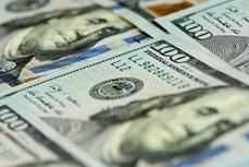 5月19日越盾对美元汇率中间价下调6越盾