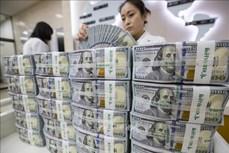 5月22日越盾对美元汇率中间价下调5越盾