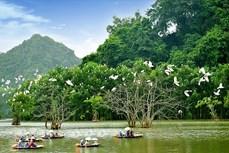 竭尽全力促进旅游业复苏 推广越南安全旅游目的地的形象