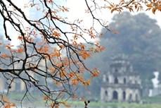河内跻身亚洲十二大最具吸引力旅游目的地行