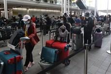 近340名越南公民从英国安全返回越南