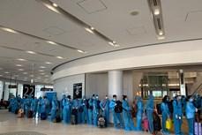 340越南公民从日本安全回国
