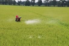 越南农业力争进入世界农业发达国家前15行列