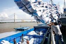 中国--越南第二大大米出口市场