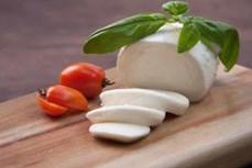 CNN赞叹在越南大叻生产的奶酪是亚洲最好吃的奶酪之一
