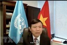 联合国安理会就和平行动与人权召开公开辩论会