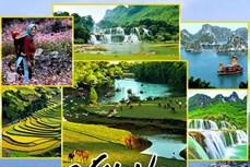 越南旅游:越南多措并举促进国内旅游业发展