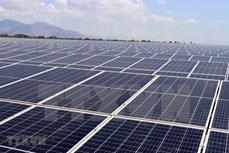 宁顺省Solar Farm太阳能发电厂正式竣工投运