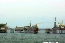 越南石油勘探和开采总公司的石油开采量超额完成计划