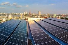 岘港市出台新政策助力家庭屋顶光伏发展
