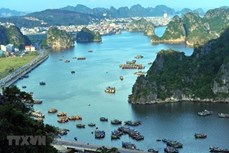 广宁省下龙湾推出优惠门票 游客量每周逐步增加