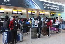 越南将在英国的340名本国公民接回国